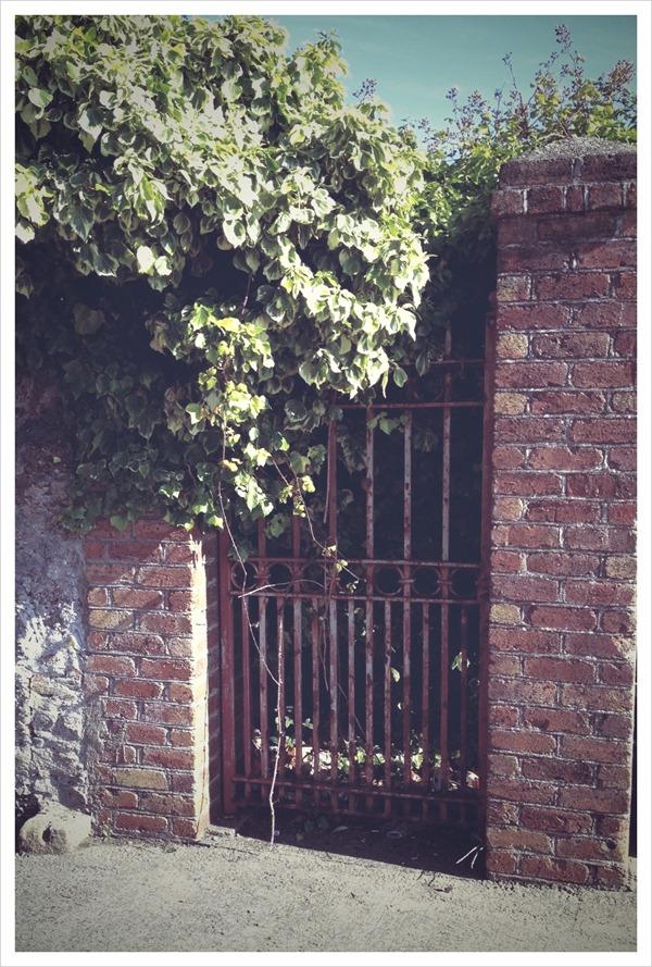 old gate.JPG